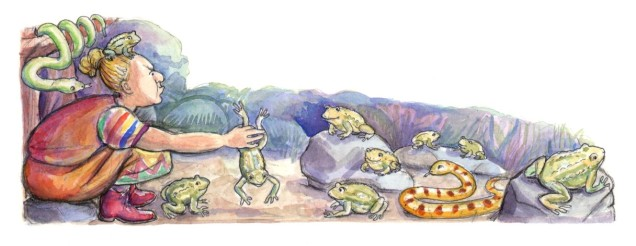 Diamonds and Toads